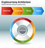 Cryptocurrency Bitcoin Architecture Chart Vector. An image of a Cryptocurrency Bitcoin Architecture chart Vector infographic Stock Illustration