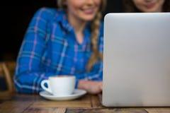 Image cultivée des amis à l'aide de l'ordinateur portable dans le café Image libre de droits