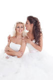 Image of cute brides fooling around at camera Royalty Free Stock Image