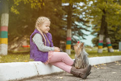 Image of cute little girl playing with dog in park Royalty Free Stock Images