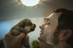 Image of cute little puppy in hands of young man Stock Photo