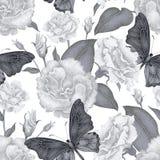 Image décorative d'un papillon Photos stock