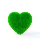 Image d'écologie Images stock