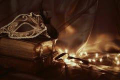 Image d'or élégant et de masque vénitien noir au-dessus de fond de Tulle Photos libres de droits