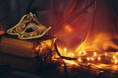 Image d'or élégant et de masque vénitien noir au-dessus de fond de Tulle Images stock