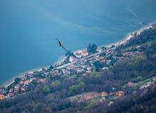 Image d'aigle de vol avec le magiorre de lac à l'arrière-plan images libres de droits