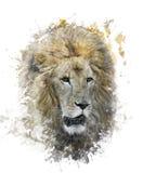 Image d'aquarelle de Lion Head illustration de vecteur