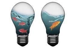 image 3D composée d'ampoule avec le poisson rouge à l'intérieur Image stock
