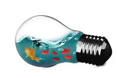 image 3D composée d'ampoule avec le poisson rouge à l'intérieur Photographie stock libre de droits