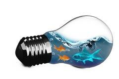 image 3D composée d'ampoule avec le poisson rouge à l'intérieur Photo libre de droits