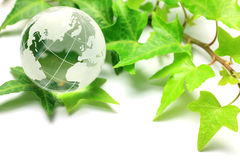 Image d'Eco Photo libre de droits