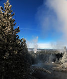 Image d'hiver en parc national de Yellowstone Photos stock
