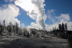 Image d'hiver en parc national de Yellowstone Photos libres de droits