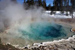 Image d'hiver en parc national de Yellowstone Images libres de droits