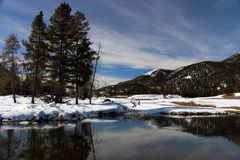 Image d'hiver en parc national de Yellowstone Images stock