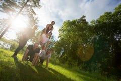 Image d'inclinaison des amis heureux faisant la pyramide humaine dans la forêt Images stock