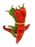 Image d'isolement de poivre d'un rouge ardent sur le plan rapproché de plat Image libre de droits