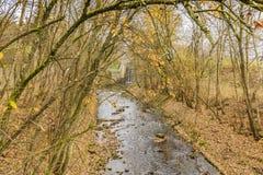 Image d'un courant tranquille entouré par des arbres avec un barrage à l'arrière-plan images libres de droits