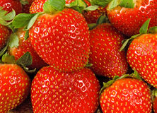 Image d'une fraise mûre sur un fond blanc Images libres de droits