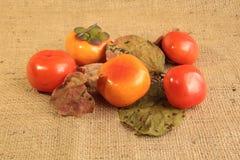 image de  Autumn Images stock