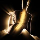 Image de balayage de radiographie d'os d'humain Photo libre de droits