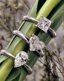Image de bijoux Photographie stock libre de droits