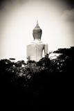 Image de Bouddha Photos libres de droits