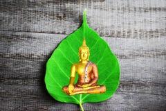Image de Bouddha et feuille verte de Bodhi sur le vieux fond en bois photo libre de droits