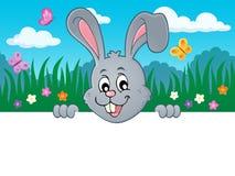 Image de cachette 2 de sujet de lapin de Pâques Photos libres de droits