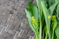 Image de Cantonese de chou commun sur le fond en bois Images stock