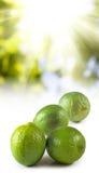 Image de citron sur le plan rapproché de fond du soleil Image libre de droits