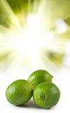 Image de citron sur le plan rapproché de fond du soleil Photographie stock