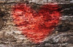 Image de coeur rouge dans la texture en bois Image stock