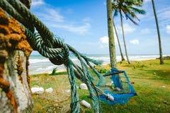 Image de foyer sélectif d'hamac sous l'arbre de noix de coco près de la plage avec le fond de ciel bleu Photographie stock