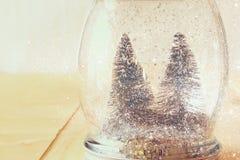 Image de foyer sélectif des arbres de Noël dans le pot de maçon recouvrement de scintillement Photos libres de droits