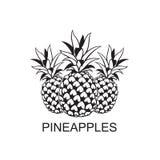 Image de fruit d'ananas illustration de vecteur