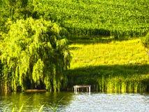 Image de HDR d'un paysage Images libres de droits