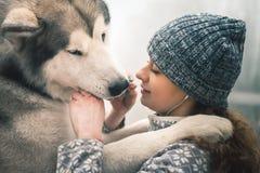 Image de jeune fille alimentant son chien, malamute d'Alaska, extérieur Images libres de droits