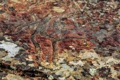 Image de la chasse antique sur le mur de la caverne ocre Art historique arch?ologie photo libre de droits
