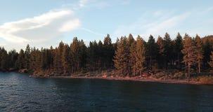 Image de la forêt sur le rivage du lac Tahoe photographie stock