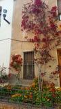 Image de maison Photographie stock