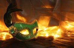 Image de masque vénitien vert élégant au-dessus de fond de Tulle Photo stock