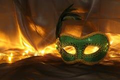 Image de masque vénitien vert élégant au-dessus de fond de Tulle Photos libres de droits