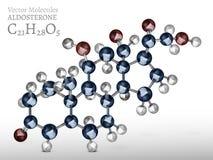 Image de molécule d'aldostérone illustration de vecteur
