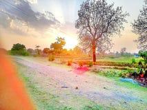 Image de nature Images stock