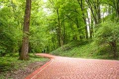 Image de passage couvert en pierre rouge en parc Image libre de droits