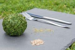 Image de plaisanterie d'un repas de vegan avec des balles d'herbe et des graines d'usine d'un plat d'ardoise photographie stock libre de droits