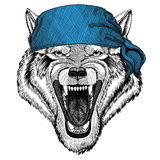 Image de port animale de bandana ou de foulard ou de bandanna d'animal sauvage de Wolf Dog Wild pour le pirate Seaman Sailor Bike Images stock