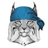Image de port animale sauvage de bandana ou de foulard ou de bandanna de Lynx Bobcat Trot Wild de chat pour le pirate Seaman Sail Photo libre de droits