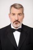 Image de portrait d'homme d'affaires supérieur Photos stock
